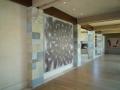 tecolote-gallery